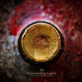 SiJ - Shimmering Lights (Live @ ФИОLAND 23.08.14)