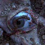 Unearthing Forgotten Horrors 16/03/15