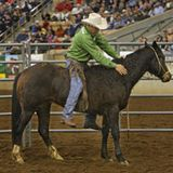 Interview with Renowned Horsemanship Trainer and Clinician, Richard Winters