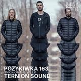 Pozykiwka #163 feat. Ternion Sound