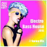 Electro House and Bass - Essential Mix