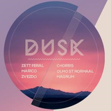 DUSK @Cue Bar, Amsterdam - Olmo St. Normaal closing set
