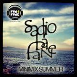 MINIMIX_SUMMER_2012