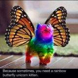 THE WIZARD DK - DragonBreath Of Epic Rainbows
