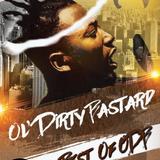 Throwback Fanatic #10 - Ol' Dirty Bastard -