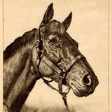 Paul McGehee's Time Machine 012817: Seabiscuit