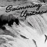 2019 - 05 - 12 Swimming Upstream- Lauretta Harrison