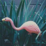 Nashville Mixtapes on WXNA - 7.15.17 (Music Only)