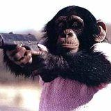 Monkey Killer - Charles Thiago