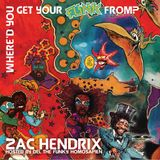DEL THE FUNKY HOMOSAPIEN & ZAC HENDRIX : WHERE'D YOU GET YOUR FUNK FROM ?
