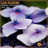 Les Fleurs 1st August 2016