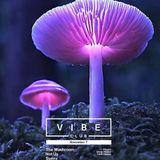 The Mushroom, 1st hour of set, VIBEclub Brno 7/11/2015