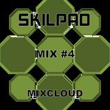 Skilpad #4