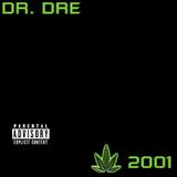 dr dre - 2001