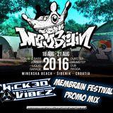 Wicked Vibez - Membrain Festival Promo Mix [www.membrainfestival.com]