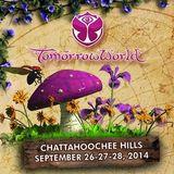 Nicky Romero - Live @ TomorrowWorld 2014 (Atlanta, USA) - 26.09.2014