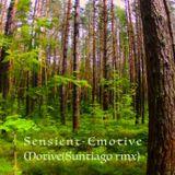 Sensient-Emotive Motive (Suntiago rmx)