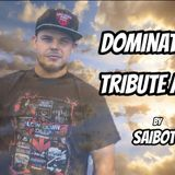 saiboT - Dominator Tribute Mix