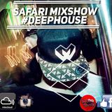Safari Mixshow #006 on Rautemusik House FM [Radio Liveshow]