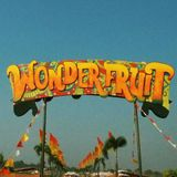 Summer Mad Disco Dub at RocketFruit in WonderFruit 2017
