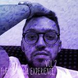 The DJ Ninja Experience Vol.2