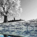 winter tale vol. 2
