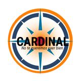 Cardinal Temp3 Prog 06