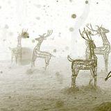 """Sole Masseur: """"Winter Wonder Boogie Trip"""""""