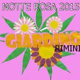 IL GIARDINO notte rosa 2015 rimini