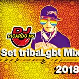 Set tribaLgbt Mix 2018 - Dj Ricardo MS