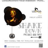 OriginalFirecat_LionessMovement_ShakeDown_2015