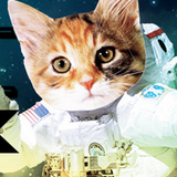 Space Life and Other Dumb Ideas  - 18 Aug 2014