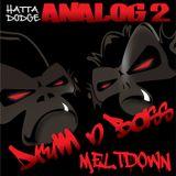 Analog 2 Show 43 - The Sunny Vibras Show