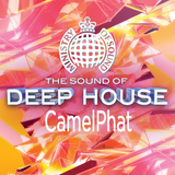 The Sound of Deep House: CamelPhat