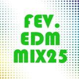 FEV. EDM Mix 25