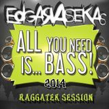 Edgar a Sekas @ All You Need Is Bass 2014
