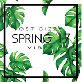 GET DIZZY - SPRING VIBES '17