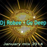 Dj Robee - Go Deep (January mix 2014)