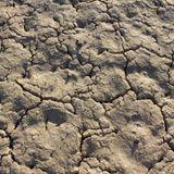 Michael Scot - Nu Desert Breaks