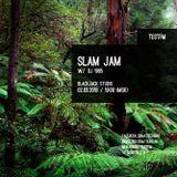 Slam Jam #8 w/ DJ 1985 - JUNGLE SPECIAL - 02/03/2016