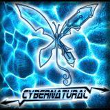 Electro Silver_CYBERNATURAL_DJ set live from Sunshine bar (LIQUID SESSION VOL.1)