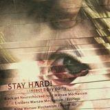 Rust @ Stay Hard 1, Skłot (2010)
