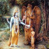 A Aplicação Universal da Consciência de Krishna