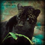 Dark Jaguar Transmission 01