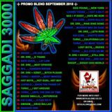 DK ENT - MIXMASTA C.DAWG - SAGGADI 3000 MIXTAPE (LIVE ON YO! MTV RAP 1994)
