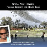 Sofia Smallstorm - Pigeons, Chickens and Henry Ford