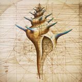 Klanglabyrinth - Stay true Even