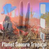 Planet Sonora Tropical