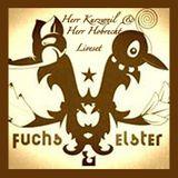 Herr Kurzweil & Herr Hobrecht Liveset Fuchs und Elster part 1
