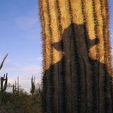 Radio Cactus- Capítulo 3º